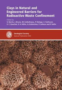 Clays in Natural and Engineered Barriers for Radioactive Waste Confinement