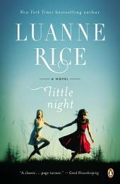 Little Night: A Novel