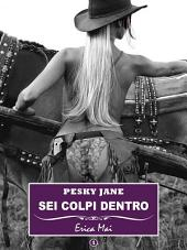 Pesky Jane Sei colpi dentro:: Volume 1