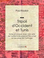 Tripoli d'Occident et Tunis: Notes et croquis, avec une visite de l'auteur à Bouvard et Pécuchet sur les ruines de Carthage