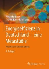 Energieeffizienz in Deutschland - eine Metastudie: Analyse und Empfehlungen, Ausgabe 2