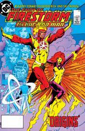 The Fury of Firestorm (1982-) #22