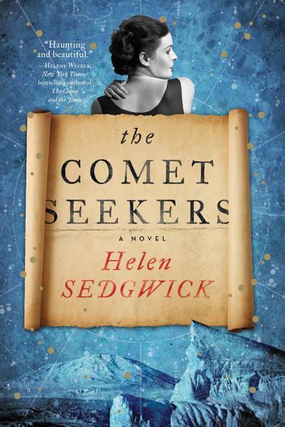 Download The Comet Seekers Book