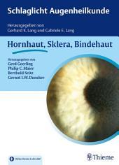 Schlaglicht Augenheilkunde: Hornhaut, Sklera, Bindehaut