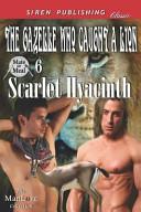 The Gazelle Who Caught a Lion