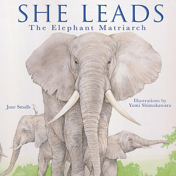 Download She Leads Book
