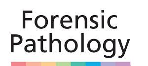 Forensic Pathology PDF