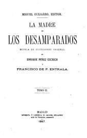 La madre de los desamparados: novela de costumbres original, Volumen 2