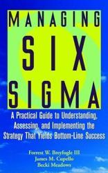 Managing Six Sigma Book PDF