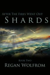 After The Fires Went Out: Shards: Book Two of the Unconventional Post-Apocalyptic Series