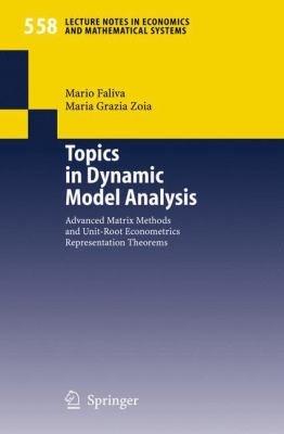 Topics in Dynamic Model Analysis