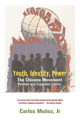 Youth  Identity  Power PDF