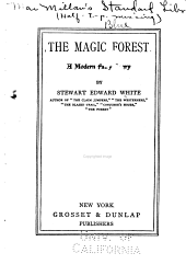 The Magic Forest: A Modern Fairy Story