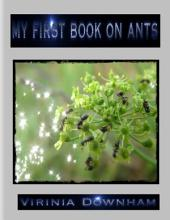 My First Book on Ants