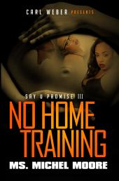 No Home Training: Say U Promise III