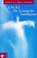 Engel  die kosmische Intelligenz PDF