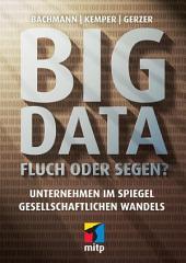 Big Data - Fluch oder Segen?: Unternehmen im Spiegel gesellschaftlichen Wandels