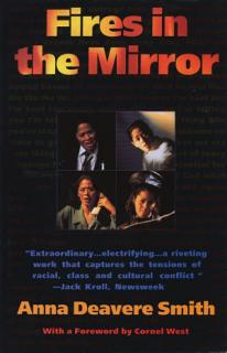 Fires in the Mirror Book