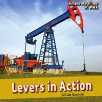 Levers in Action PDF