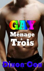 GAY Menage a Trois: (gay threesome erotica, casual encounters)