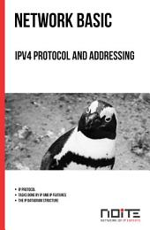 IPv4 Protocol and addressing: Network Basic. AL0-020