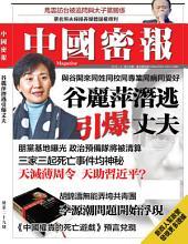 《中國密報》第29期: 谷麗萍潛逃引爆丈夫