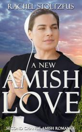 A New Amish Love: Second Chance Amish Romance (Christian Fiction Books)