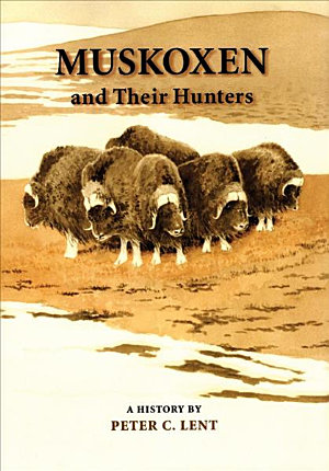 Muskoxen and Their Hunters