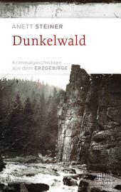 Dunkelwald: Kriminalgeschichten aus dem Erzgebirge