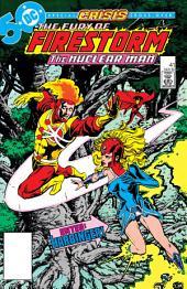 The Fury of Firestorm (1982-) #41