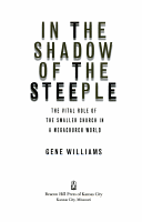 In the Shadow of the Steeple PDF