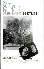 Elm Bark Beetles PDF