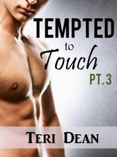 Tempted to Touch Pt. 3 (Interracial Romance)