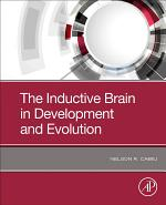 The Inductive Brain in Development and Evolution