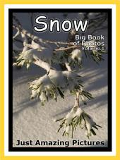 Just Snow! vol. 1: Big Book of Snowy Winter Weather Snowing Cold Snow Photographs & Pictures