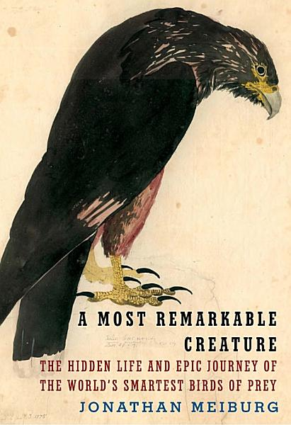 Download A Most Remarkable Creature Book
