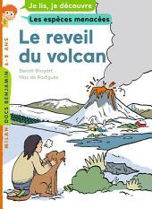 Le réveil du volcan