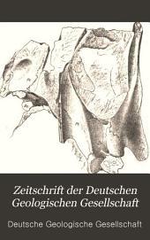 Zeitschrift der Deutschen Geologischen Gesellschaft: Band 45