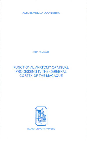 Functional Anatomy of Visual Processing in the Cerebral Cortex of the Macaque