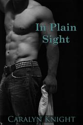 In Plain Sight: An Erotic Fantasy
