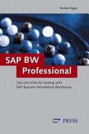 SAP BW Professional