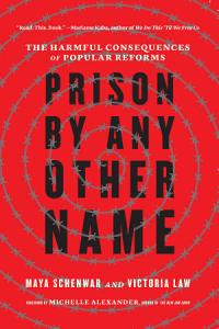 Prison by Any Other Name Book