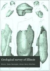 Geological Survey of Illinois: Volume 7