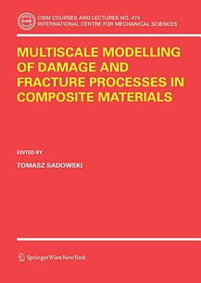 Multiscale Modelling of Damage and Fracture Processes in Composite Materials