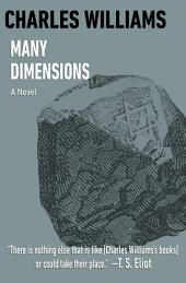 Many Dimensions: A Novel