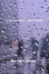Surviving a New England Winter