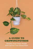 A Guide To Growing Pothos