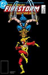 The Fury of Firestorm (1982-) #26