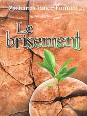 LE BRISEMENT: Le Secret du Debordement Spirituel