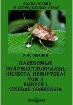 Фауна России и сопредельных стран. Насекомые полужесткокрылые (Insecta Hemiptera). Cixiidae Orgeriaria